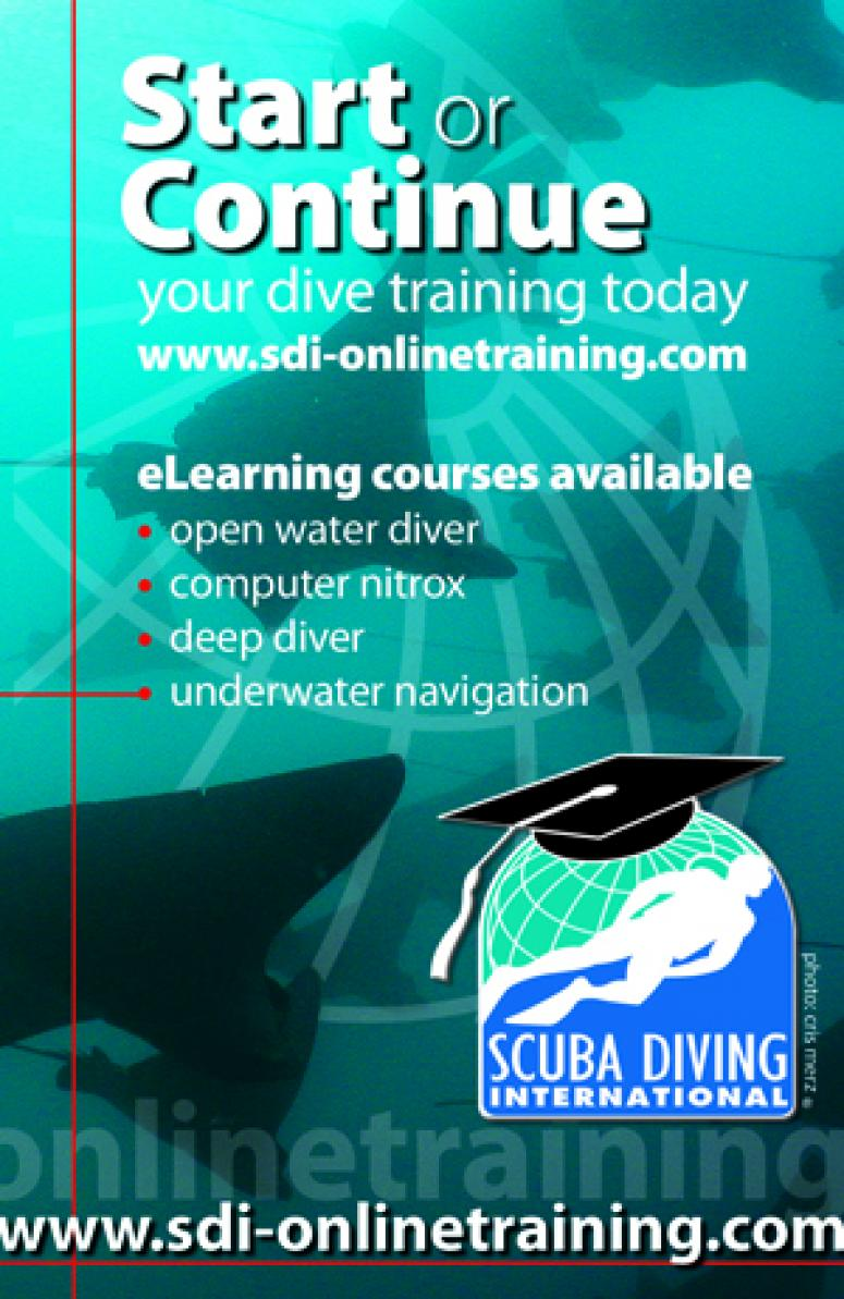 SDI Advert
