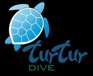 Turtur Dive