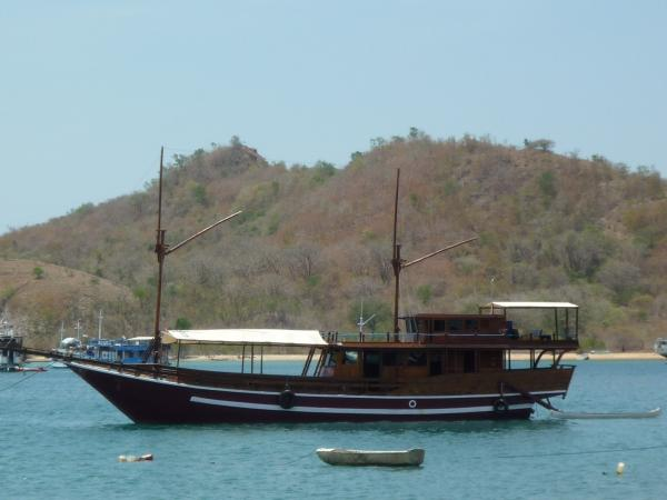 3 day / 2 night National Geographic tour in Komodo National Park (9 Dives)