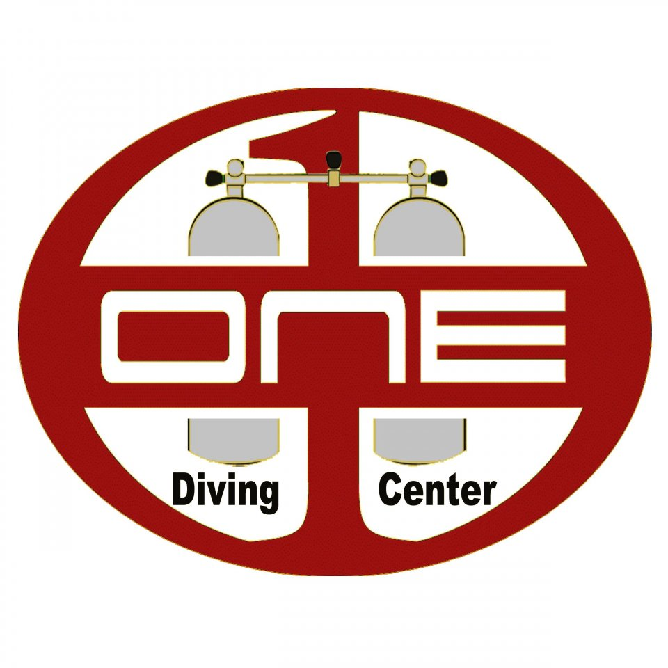 Diving ONE - Logo