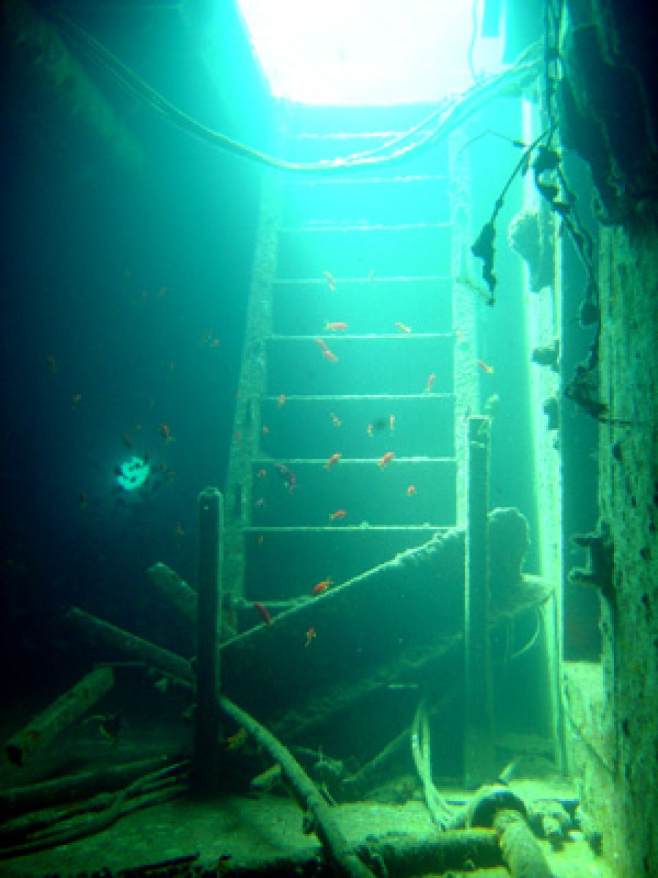 Million Hope Wreck-2