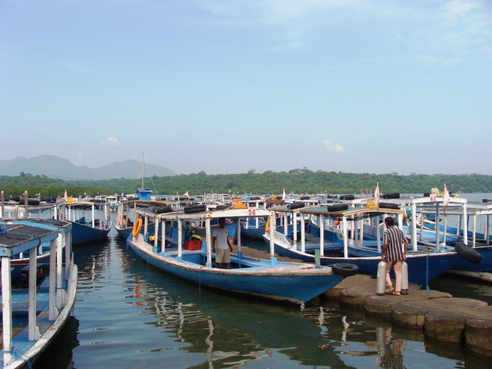 Pemuteran Dive Center