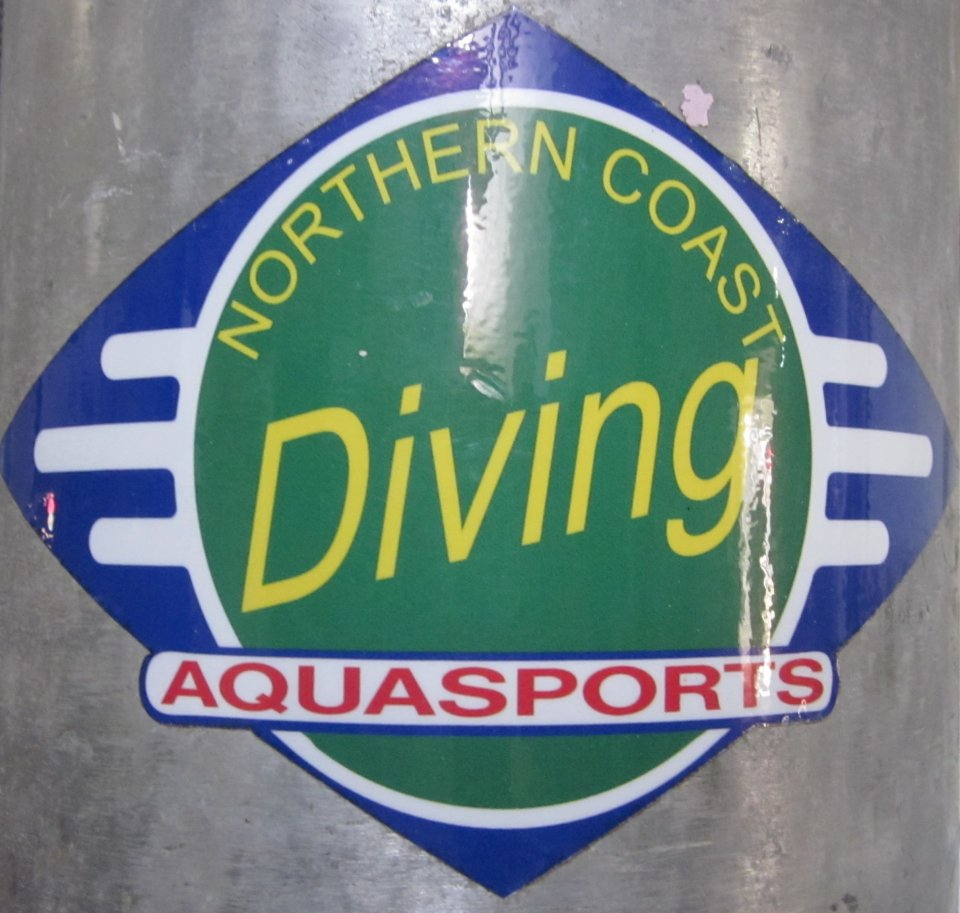 Northern Coast Diving