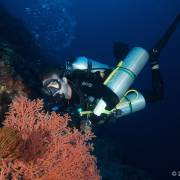 Blue Label Diving Indonesia