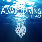 Alvaro Diving Koh Tao