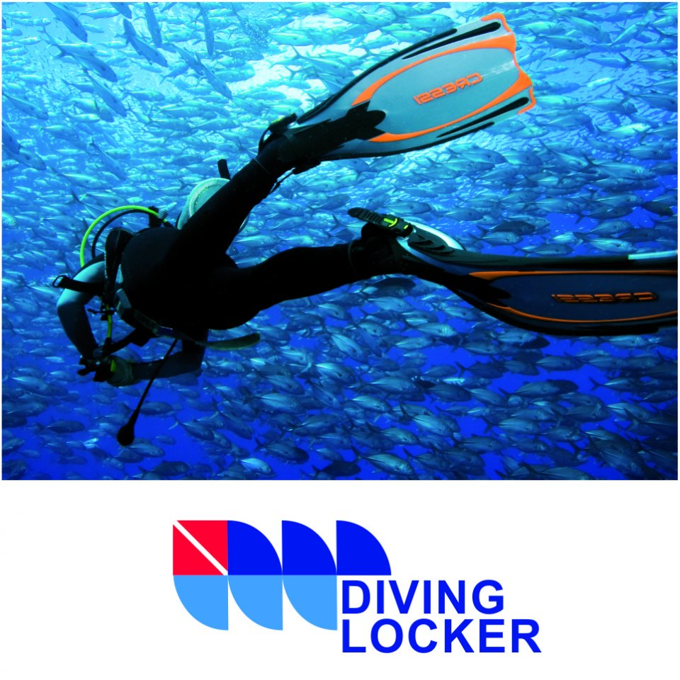 The Diving Locker, Vancouver