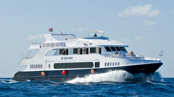 Liveaboard safari St Johns Red sea