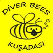 Diver Bees Dive Center