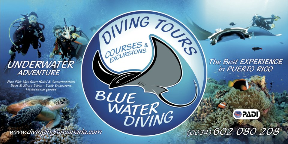 Blue Water Diving