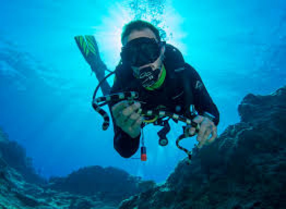 the sport of scuba diving Located just outside of portland, oregon we offer classes ranging from scuba certification through instructor training plus equipment rental and servicing.