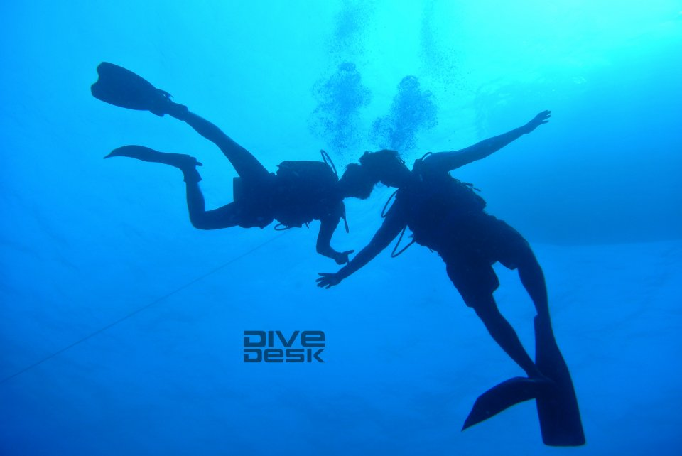 Diving is Fun