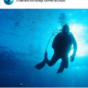 Marathon Divers club
