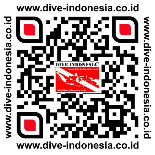 Dive Indonesia Logo