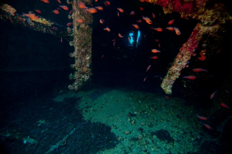 The Nasello Wreck