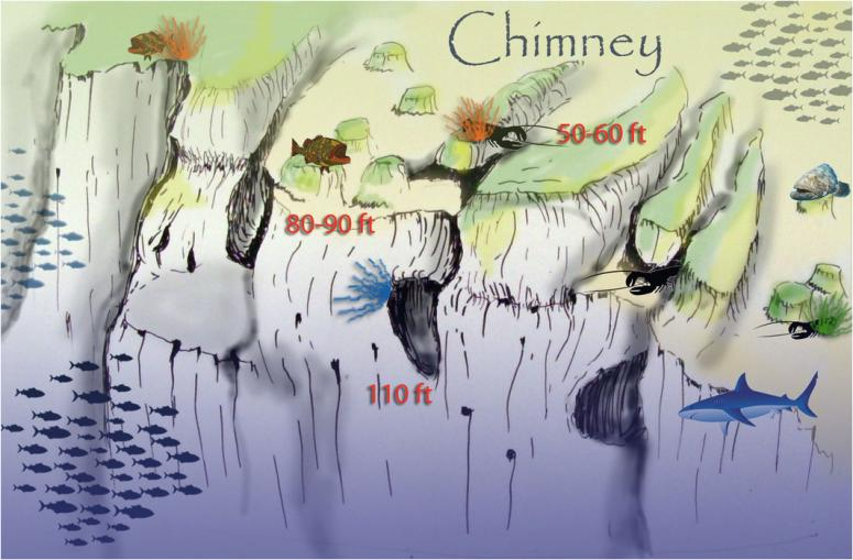 Chimney Briefing Map