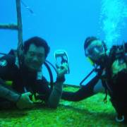 Diving Adventures Cozumel